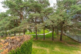 """Photo 16: 211 5700 200 Street in Langley: Langley City Condo for sale in """"Langley Village"""" : MLS®# R2590509"""