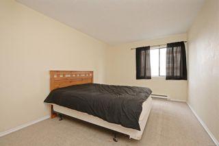 Photo 13: 310 755 Hillside Ave in : Vi Hillside Condo for sale (Victoria)  : MLS®# 869551