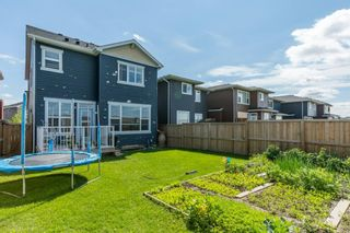 Photo 29: 191 Redstone Heights NE in Calgary: Redstone Detached for sale : MLS®# A1023196