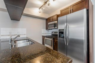 """Photo 11: 246 5660 201A Street in Langley: Langley City Condo for sale in """"PADDINGTON STATION"""" : MLS®# R2578967"""