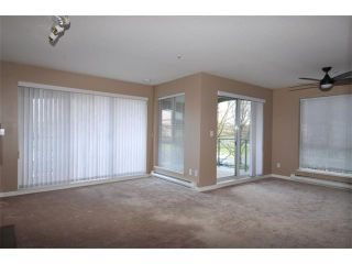Photo 7: # 204 20110 MICHAUD CR in Langley: Langley City Condo for sale : MLS®# F1426590