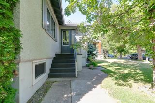 Photo 38: 509 ALEXANDER Crescent NW in Calgary: Rosedale Detached for sale : MLS®# A1091236