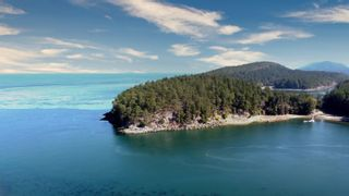 Photo 39: 794 STEWARD Drive: Mayne Island House for sale (Islands-Van. & Gulf)  : MLS®# R2615581