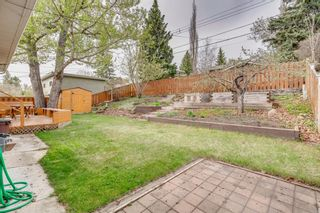 Photo 39: 3603 Chippendale Drive NW in Calgary: Charleswood Detached for sale : MLS®# A1103139
