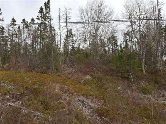 Main Photo: Loop of Highway Highway 103 in Beaverdam Lake: 407-Shelburne County Vacant Land for sale (South Shore)  : MLS®# 202107662