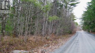 Photo 6: Lot Medway River Road in Mill Village: Vacant Land for sale : MLS®# 202108227