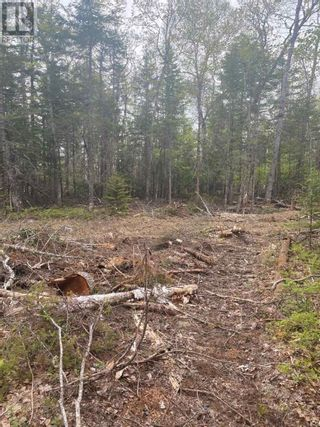 Photo 3: West Caledonia in Whiteburn Mines: Vacant Land for sale : MLS®# 202112919