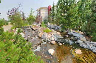 Photo 3: 412B 511 QUEEN Street: Spruce Grove Condo for sale : MLS®# E4255260