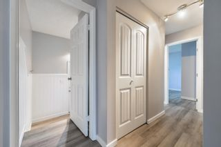 Photo 23: 1 BURLINGTON Avenue: Spruce Grove House for sale : MLS®# E4261473