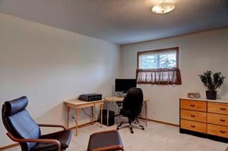 Photo 18: 59 SOMERVALE Park SW in Calgary: Somerset House for sale : MLS®# C4121377
