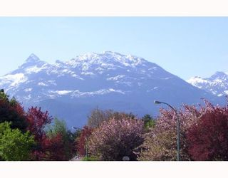 Photo 7: 41497 MEADOW Avenue: Brackendale House for sale (Squamish)  : MLS®# V698563