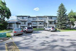 Photo 46: 18 12 TEMPLEWOOD Drive NE in Calgary: Temple Row/Townhouse for sale : MLS®# A1021832