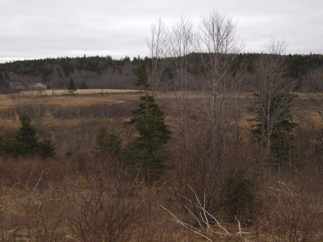Main Photo: LOT PLEASANT VALLEY in Yarmouth: County Hwy 340 Vacant Land for sale : MLS®# 4868156