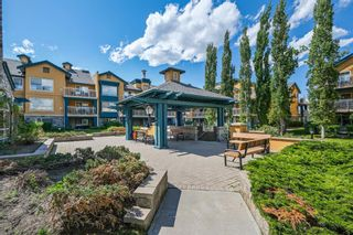Photo 2: 320 25 Richard Place SW in Calgary: Lincoln Park Apartment for sale : MLS®# A1115963