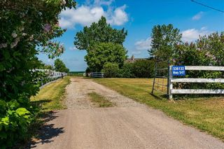 Photo 7: 336132 Hwy 547: Rural Foothills County Detached for sale : MLS®# C4255448