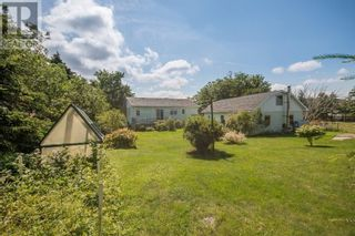 Photo 7: 298 Blackmarsh Road in St. John's: Other for sale : MLS®# 1237327