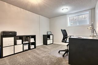 Photo 21: 816 Thorneycroft Drive NW in Calgary: Thorncliffe Detached for sale : MLS®# A1080703