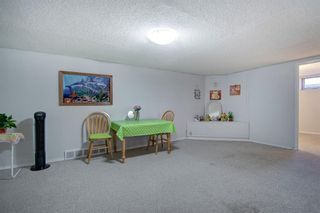 Photo 21: 503 35 Street NW in Calgary: Parkdale Detached for sale : MLS®# A1115340