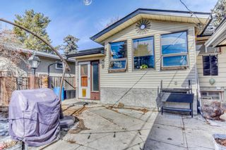 Photo 9: 2115 Mackid Crescent NE in Calgary: Mayland Heights Detached for sale : MLS®# A1080509