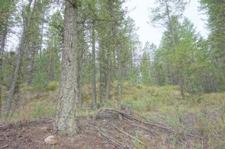 Photo 3: Lot 24 Valley Vista Way in Fairmont Hot Springs: Vacant Land for sale (Bella Vista Estates)  : MLS®# 2452799