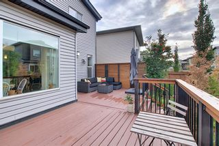 Photo 19: 166 Walden Park SE in Calgary: Walden Detached for sale : MLS®# A1054574