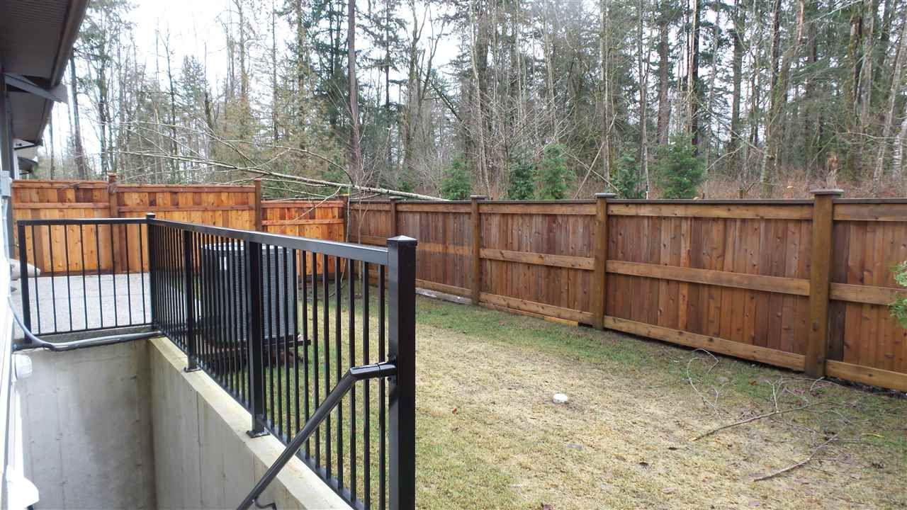 Photo 29: Photos: 20498 77A AVENUE in Langley: Willoughby Heights House for sale : MLS®# R2526741