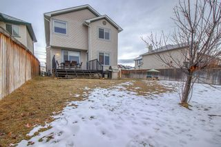 Photo 41: 16202 Everstone Road SW in Calgary: Evergreen Detached for sale : MLS®# A1050589
