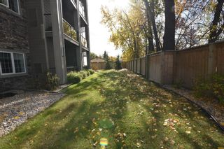 Photo 45: 115 230 Bonner Avenue in Winnipeg: North Kildonan Condominium for sale (3G)  : MLS®# 202103573