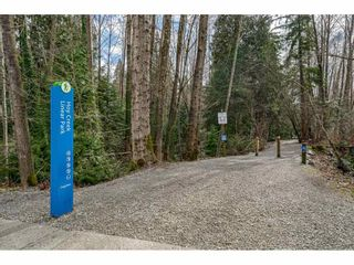 "Photo 35: 14 2978 WALTON Avenue in Coquitlam: Canyon Springs Townhouse for sale in ""Creek Terraces"" : MLS®# R2548187"