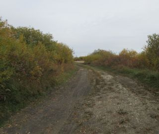 Photo 2: 55101 RR 270: Rural Sturgeon County Rural Land/Vacant Lot for sale : MLS®# E4265205