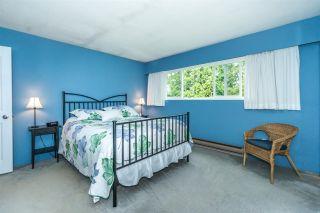 Photo 16: 20247 PATTERSON Avenue in Maple Ridge: Southwest Maple Ridge House for sale : MLS®# R2279033
