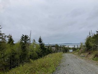 Photo 8: Lot 102 Point Road in Clam Bay: 35-Halifax County East Vacant Land for sale (Halifax-Dartmouth)  : MLS®# 202116103
