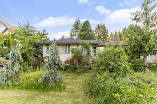 Photo 13: 10937 145A Street in Surrey: Bolivar Heights House for sale (North Surrey)  : MLS®# R2603149