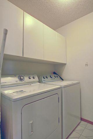 Photo 23: 147 MAYLIEWAN Close in Edmonton: Zone 28 House for sale : MLS®# E4254143