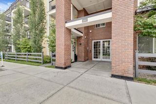 Main Photo: 1219 99 Copperstone Park SE in Calgary: Copperfield Apartment for sale : MLS®# A1130539