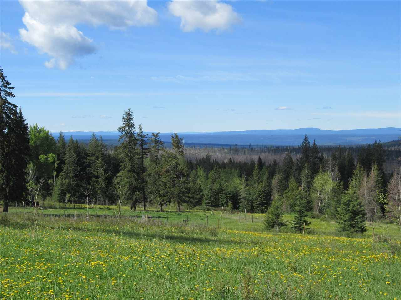 Main Photo: 1245 SCHEFFLER Road: 150 Mile House Land for sale (Williams Lake (Zone 27))  : MLS®# R2542760
