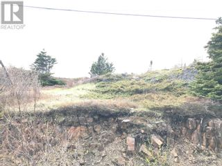 Photo 4: 0 Main Street in Embree: Vacant Land for sale : MLS®# 1229550