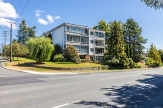 Photo 1: 305 190 W Gorge Rd in Saanich: SW Gorge Condo for sale (Saanich West)  : MLS®# 882812