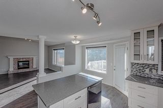 Photo 18: 186 Coral Springs Boulevard NE in Calgary: Coral Springs Detached for sale : MLS®# A1146889