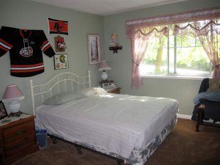 "Photo 7: 115 11601 227 Street in Maple Ridge: East Central Condo for sale in ""CASTLEMOUNT / FRASERVIEW VILLAGE"" : MLS®# R2312329"