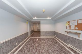 """Photo 30: 202 9865 140 Street in Surrey: Whalley Condo for sale in """"Fraser Court"""" (North Surrey)  : MLS®# R2527405"""