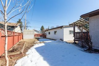 Photo 27: 8812 34 Avenue NW in Calgary: Bowness Detached for sale : MLS®# A1083626
