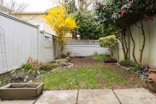 Photo 17: 18 3031 WILLIAMS ROAD in Richmond: Seafair Townhouse for sale : MLS®# R2152876