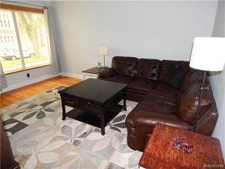 Photo 5: 99 Carmen Avenue in WINNIPEG: East Kildonan Residential for sale (North East Winnipeg)  : MLS®# 1523761