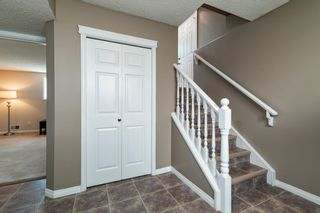 Photo 32: 1 ERINWOODS Place: St. Albert House for sale : MLS®# E4254213