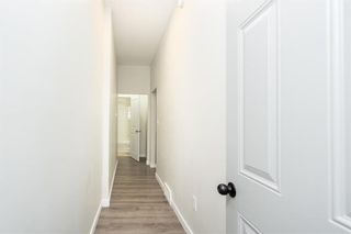 Photo 21: 367 Agnes Street in Winnipeg: West End Residential for sale (5A)  : MLS®# 202110420
