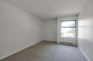 Photo 16: 201 585 Dogwood St in : CR Campbell River Central Condo for sale (Campbell River)  : MLS®# 879500