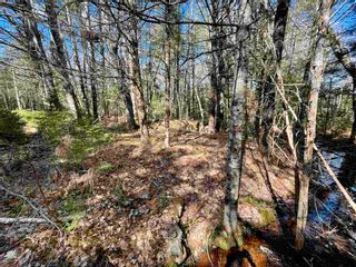 Photo 19: Lot VH-1 Highway 10 in Meisners Section: 405-Lunenburg County Vacant Land for sale (South Shore)  : MLS®# 202111350