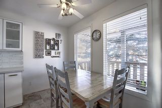 Photo 8: 211 Doverglen Crescent SE in Calgary: Dover Detached for sale : MLS®# A1060305