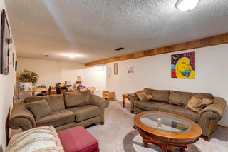 Photo 20: 11 Bedwood Place NE in Calgary: Beddington Heights Detached for sale : MLS®# A1145937